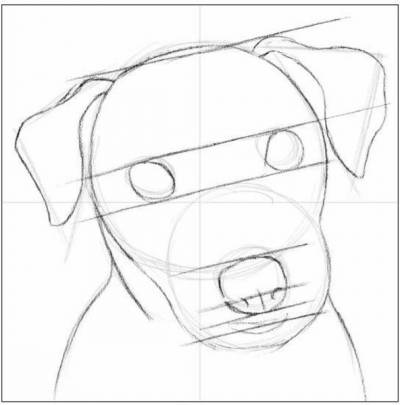 draw a dog 3